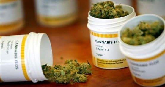 大麻药房 - 法国
