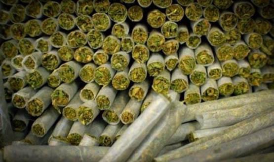 medical-cannabis_2