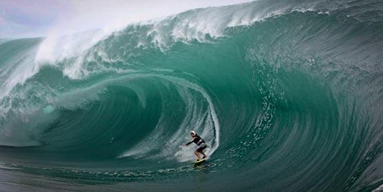 Australie-un-requin-bondit-sur-la-planche-d-un-surfeur