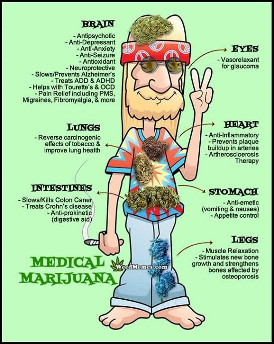 medische marihuana-benefits-hippy-weedmemes