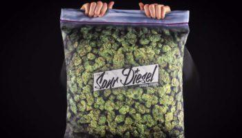 Stockage de votre weed