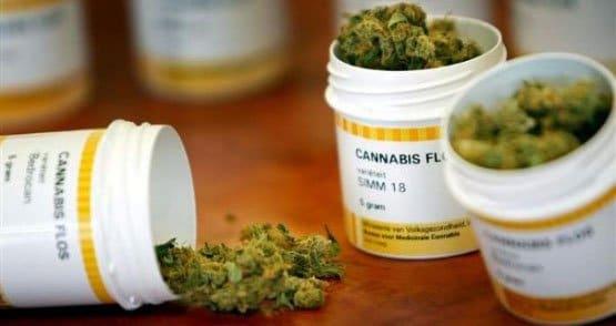 cannabis-en-pharmacie-france