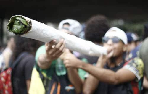 4657845_6_beae_une-marche-pour-la-legalisation-de-la_d25340624e343c6139e1da9659a92b6a