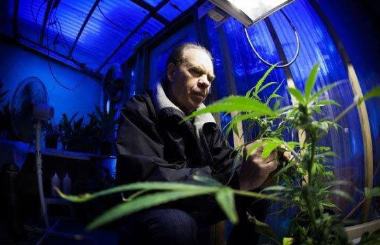 Ed-Rosenthal-guru-cannabisnow-620x400