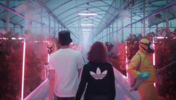 Adidas & sa vision du futur cannabique