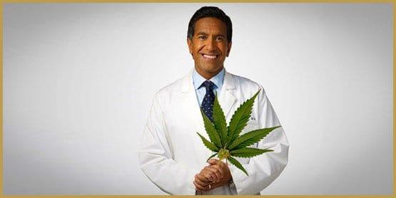 medical-marijuana-revolution-1