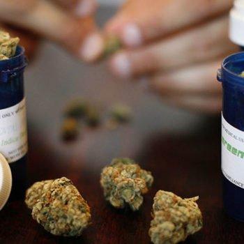 L'Australie autorise la culture de marijuana médicale