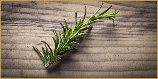 лекарственные травы-3-
