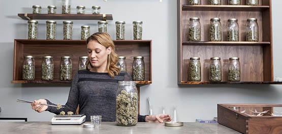 comment-pourrait-s-organiser-concretement-la-legalisation-du-cannabis-en-france_exact1900x908_l