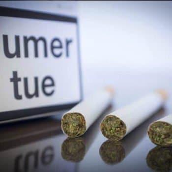 Pourquoi ne pas laisser les buralistes vendre de la marijuana ?