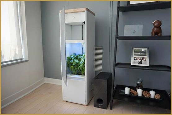 grobo-smart-garden-grows-high-end-medical-marijuana-at-home