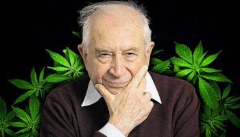 Geen verband tussen legalisatie en schade aan de gezondheid
