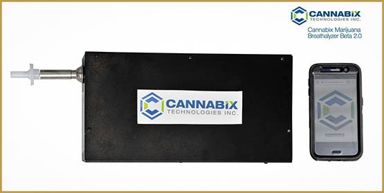 photo-6-cannabix-beta-2-0_orig
