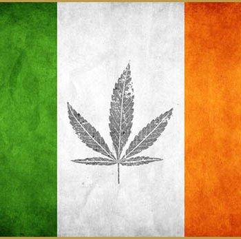 Ireland considers Medical cannabis