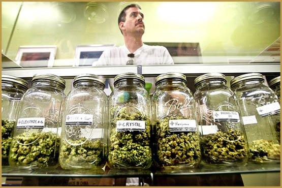 marijuana-dispensaries-moratorium