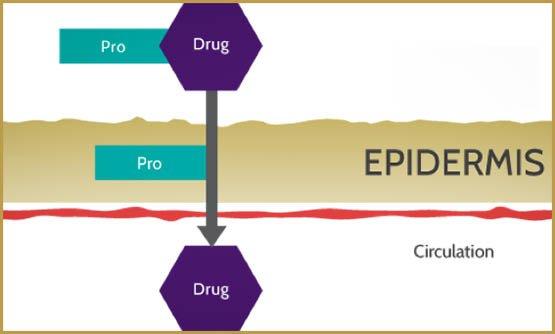zynerba-pro-drug-delivery-10-16-copie