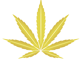 Blog-Cannabis