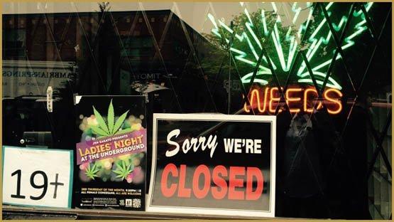 toronto-police-raid-pot-shops