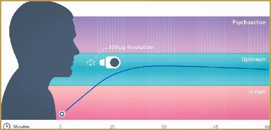 graph-4-large
