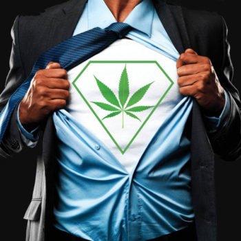 Les meilleures écoles de formation au cannabis