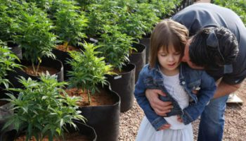 The exodus to the lands of medical cannabis
