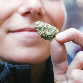 Le cannabis contre les nausées