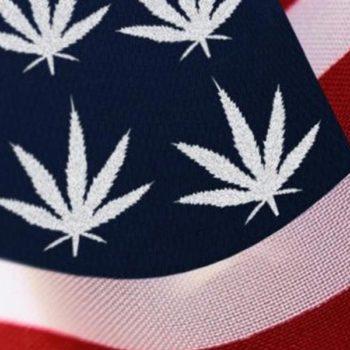 Les 7 états américains qui se preparent à la légalisation