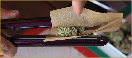Les différentes résines de cannabis
