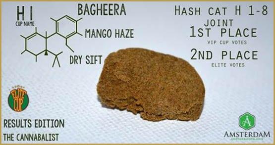 Mango Haze Dry Sift / Bagheera
