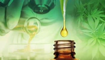 Le CBD peut contrecarrer les effets negatifs du THC