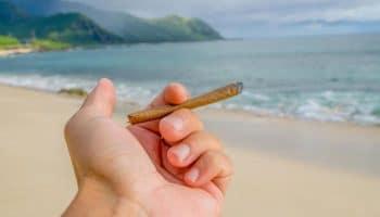 Les californiens pourront fumer et vapoter en plein air