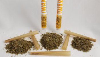 ¿Conoces los Rolling Papers de THC?