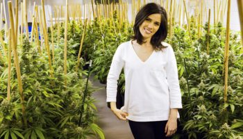 Women have a majority stake of 57% in cannabusiness