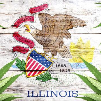 Negli anni 11, può portare la cannabis a scuola