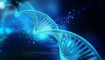 En fonction de notre ADN, le cannabis agit différemment sur chacun