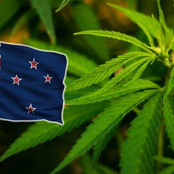 New Zealand parliament votes for legalization