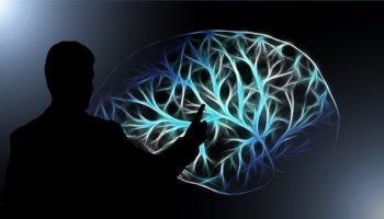 La weed contre la dégénérescence du cerveau