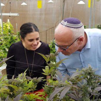 إسرائيل ، بين الخلل الدستوري والبراغماتية