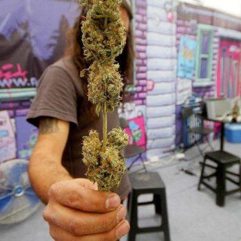 Eröffnung des Cannabis Cup in Mexiko