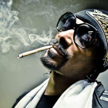 Le panthéon des fumeurs pour Snoop Dogg et Seth Rogen