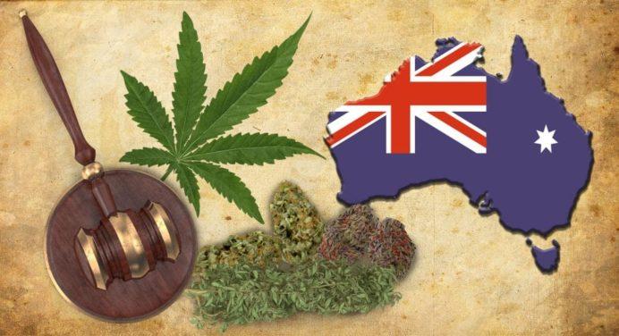 Het gras is waarschijnlijk vóór Kerstmis legaal op Australisch grondgebied.