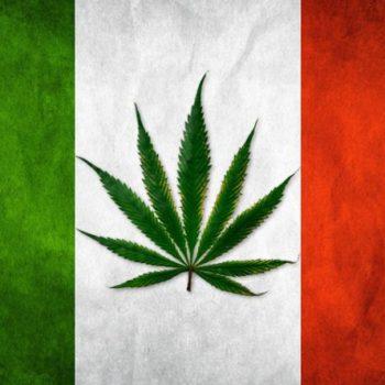 """Italie: confirmation de la légalité du cannabis """"light"""""""