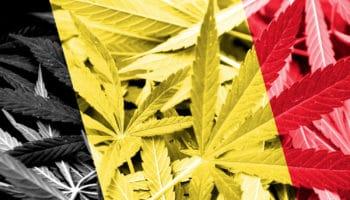 Bélgica prepara enmienda para legalización