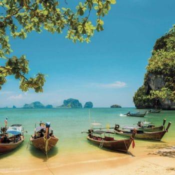 泰国:法律将允许研究医疗用途