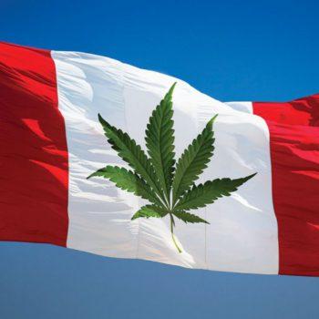 Promesse tenue pour Trudeau: la légalisation du cannabis votée au Canada