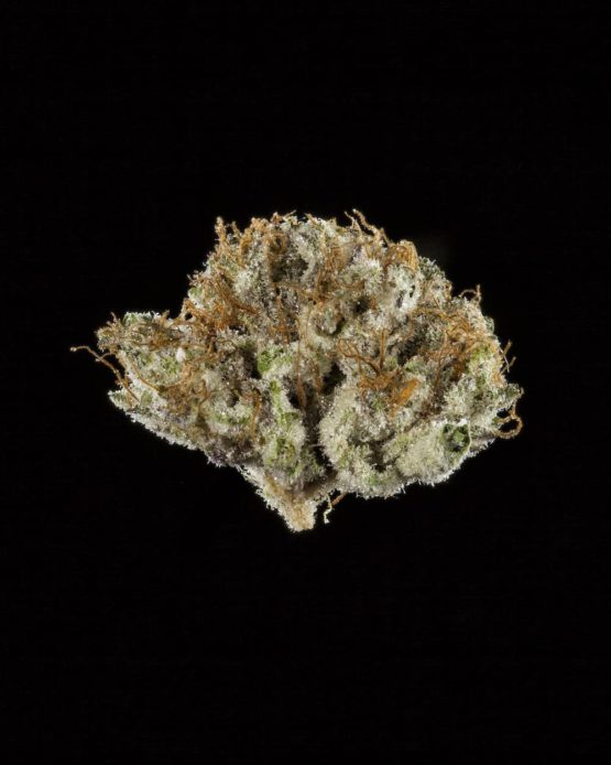The Winning Buds Of The 2018 Cannabis Cup
