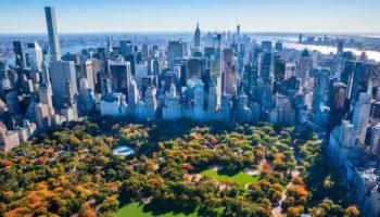 legalization, legal market, legal cannabis, Department of Health, New York