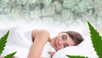 Medical cannabis and sleep apnea