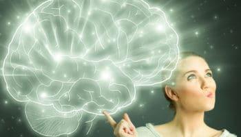 système endocannabinoïde,cannabidiol,cerveau
