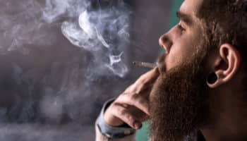 cannabis preservative, professional smokers